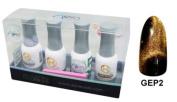 Aora 3D GEP Gel Kit Colour Electro Phoresis Kit # 2 Rustic Space