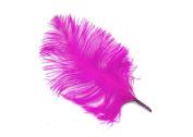 24 Fucshia Pieces Ostrich Feather Plumes 15cm - 20cm Long - 15 Colours Available