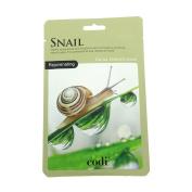 Codi Mask Snail
