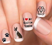 Boston Terrier Design #3 Nail Art Decals