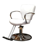 BR Beauty Arctic Styling Chair