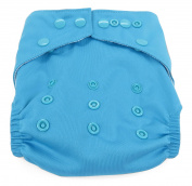 Dandelion Nappies Nappy Cover Shell with Snaps- One Size - Sky