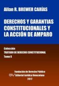 Derechos y Garantias Constitucionales y La Accion de Amparo. Tomo X. Coleccion Tratado de Derecho Constitucional [Spanish]