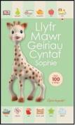 Llyfr Mawr Geiriau Cyntaf  [WEL]