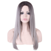 Rechoo 60cm Ombre Grey Two Tone Fashion Straight Synthetic Capless Hair Wig for Girl,Lady,Woman