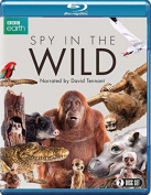 Spy in the Wild [Region B] [Blu-ray]