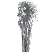 """Silver Sparkle Glitter Curly Ting Ting Branches Vase Filler for Wedding, Holiday & Home Decoration by Royal Imports, 26"""", 75 Stems"""