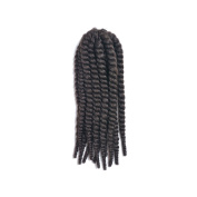 Styler Varicoloured Braid Heat-Resistant Synthetic Fibre African Braids Hair Extension for Women