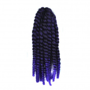 Deercon Womens Wigs Braided African Hair Extensions Small Pigtail