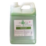 Capilo Pro Olive Oil (Aceite De Oliva) Shampoo 10.6l/ 10.5 kg