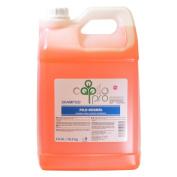 Capilo Pro Pelo Normal Hair Shampoo 10.6l/ 10.5 kg