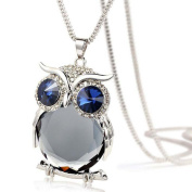 Christmas Necklace Gift! AMA(TM) Women Luxury Fashion Owl Pendant Diamond Sweater Chain Long Necklace Jewellery