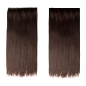 Nefertiti Synthetic Hair Extensions Silky Straight 5 Clip in Hair Pieces, Heat Resistance Clip on Hair Pieces 60cm 120g
