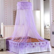 CdyBox Round Lace Hanging Princess Mosquito Net for Single Twin Full Queen