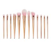 ExGizmo 12pcs Foundation Blusher Eyeshadow Makeup cosmetic Brushes Set Kits Tools