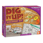 Dig It Up! Discovery Kit