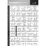 Dumbbell Workout Exercise Poster - NOW LAMINATED - Strength Training Chart - Build Muscle, Tone & Tighten - Home Gym Weight Lifting Routine - Body Building Guide w/ Free Weights & Resistance - 50cm x 80cm