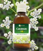 CARAWAY OIL 100% NATURAL PURE UNDILUTED UNCUT ESSENTIAL OILS 50ML