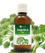 ANGELICA OIL 100% NATURAL PURE UNDILUTED UNCUT ESSENTIAL OIL 50ML