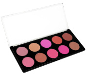Style Essentials 10 Large Blush Palette
