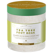 CalilyLife Organic Tea Tree Oil Foot Soak with Natural Dead Sea Minerals , 520ml - Foot Bath Eliminates Odours, Fights Fungus, Softens and Refreshes Feet - Rejuvenate and Detox Tired and Achy Feet