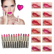LHWY 12pcs/lot Lipsticks Lip Stain Makeup Lot Leopard Moisturising Lip Stick Set