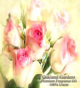 BULK x Victorian Roses Fragrance Oil - Classic aroma of freshly cut roses with base notes of amber musk - By Oakland Gardens