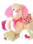 Valentine Teddy Bear and Pink Blanket 130cm x 150cm