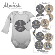 Modish - Creative Collective 12 Monthly Baby Stickers, Brown, Beige, Grey, Boy, Baby Belly Stickers, Monthly Onesie Stickers, First Year Stickers Months 1-12, Arrows, Chevron, Tribal, Baby Boy