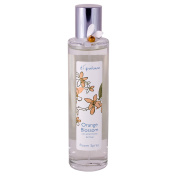 Di Palomo Home Fragrance Room Spray 100ml - Orange Blossom