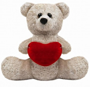 Valentines Day Teddy Bear with Heart