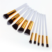 JasCherry 10 Pcs Professional Cosmetic Makeup Brushes Set - Essential Make Up Tools Kit for Professional as well as Personal Use
