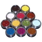 EZI 12 Colours Nail Art Acrylic Glitter Powder Dust Tips Decoration Tool Set # 5501460 by EZI
