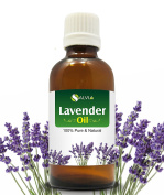 LAVENDER OIL 100% NATURAL PURE UNDILUTED UNCUT ESSENTIAL OIL 50ML