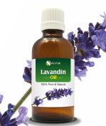 LAVANDIN OIL 100% NATURAL PURE UNDILUTED UNCUT ESSENTIAL OILS 50ML