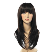 Aoert Long Straight Natural Black Wigs with Bangs Heat Resistant Synthetic Wigs for Black Women 70cm
