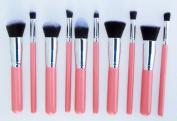 AENMIL Superior Professional Soft Cosmetic Makeup Brush Set 10pcs