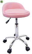 DevLon NorthWest Salon Stool with Back Rest Saddle Hydraulic Spa Stool