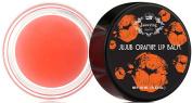 Orange Lightening Lip Treatment - Rich Shea Butter Lip Balm, Goes on Clear, Softens, Hydrates, Nourishes & Lightens Dark Lips - Net 10ml