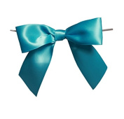 12 Pack Turquoise Blue Pre-tied Bows Party Favour Gift Packaging Bows