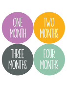 Months in Motion 1050 Monthly Baby Stickers Baby Girl Month 1-12 Milestone Sticker