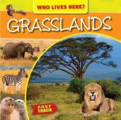 Grasslands (Fast Track