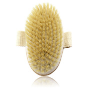 IBEET Dry Body Brush,Natural Bristle,3 Soft Style Exfoliating Scrub Brush For Remove Dead Skin