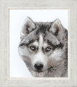 Embroidery Beadwork kit Charivna mit #B-062 Husky Jogging Dog Cute Beautiful 23x28 cm / 9.06x11.02 in