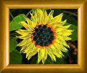 Quilting kit Charivna mit #КВ-035 Sunflower Flowers Summer 15x12 cm / 5.91x4.72 in