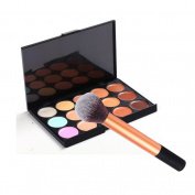 Meritina Professional 15 Colours Face Makeup Concealer Contour Palette with 1pcs Blush Brush