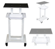 LCL Beauty Steel Frame Salon Spa Roller Trolley Cart Stand Storage Bin and Tool Implement Racks Salon Spa Beauty Equipment