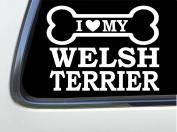 ThatLilCabin - I LOVE MY WELSH TERRIER 20cm AS647 car sticker decal