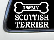 ThatLilCabin - I LOVE MY SCOTTISH TERRIER 20cm AS643 car sticker decal