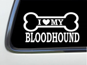 ThatLilCabin - I LOVE MY BLOODHOUND 20cm AS587 car sticker decal